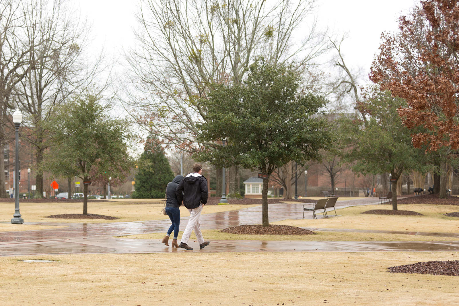couple walks on auburn university's campus