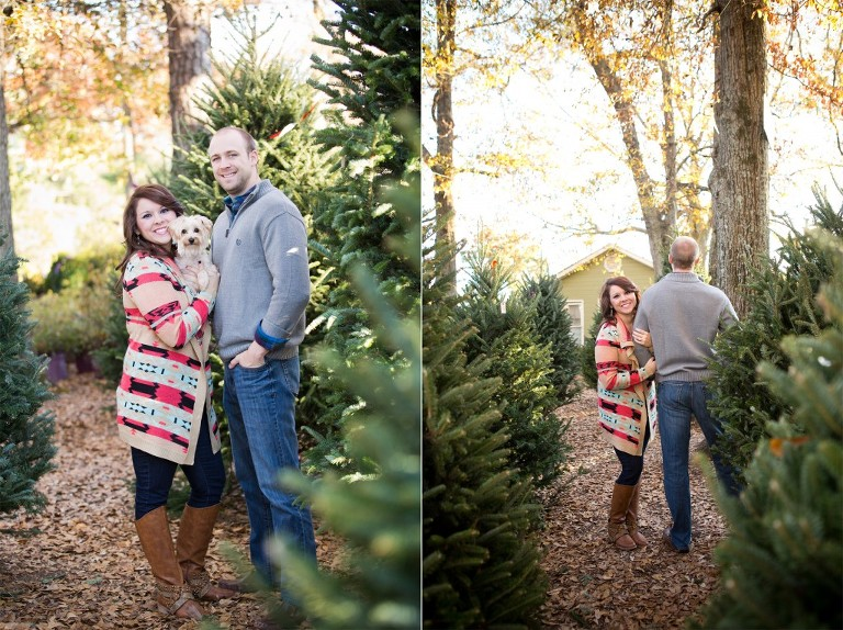 tree farm christmas engagement